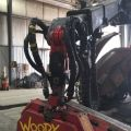 1000 Link-Woody 60 (002).JPG